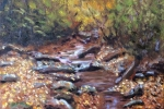 Autumn on the Pacolet