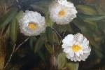 Three Camellias